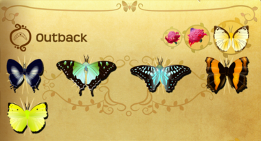 Outback Set§Flutterpedia