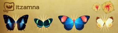 Itzamna Set§Flutterpedia