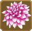 Mehndi Set§DecorationSingle CommonRight