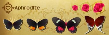 Aphrodite Set§Flutterpedia