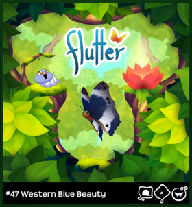 Western Blue Beauty§Loading Screen