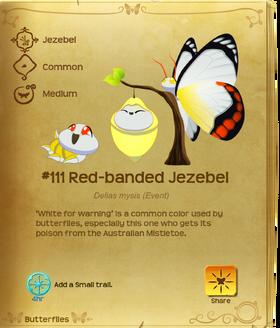 Red-banded Jezebel§Flutterpedia