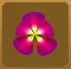 Rama-rama Set§AF 20%
