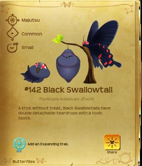 Black Swallowtail§Flutterpedia