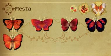Fiesta Set§Flutterpedia