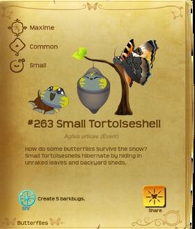 Small Tortoiseshell§Flutterpedia