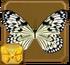 Paper Kite§Headericon