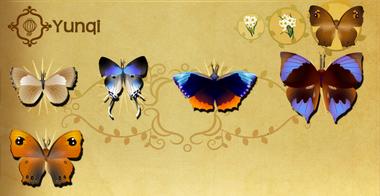 Yunqi Set§Flutterpedia