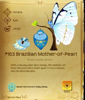 Brazilian Mother-of-Pearl§Flutterpedia