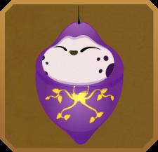 Queen Purple Tip§Chrysalis