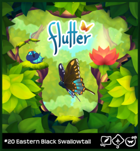 Eastern Black Swallowtail§Loading Screen