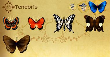 Tenebris Set§Flutterpedia