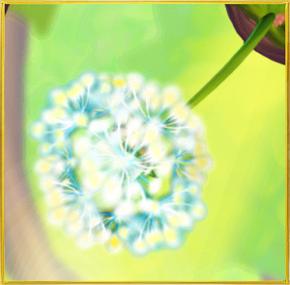 Dandelion§Spawn