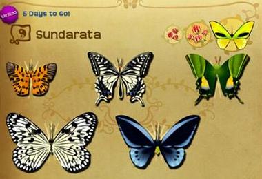 Sundarata Set§Flutterpedia