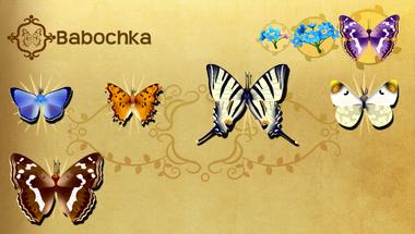 Babochka Set§Flutterpedia