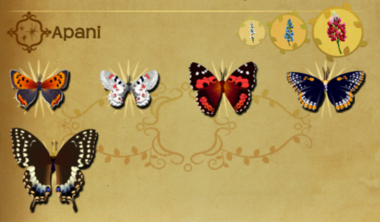 Apani Set§Flutterpedia