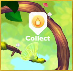 In Forest§Collect