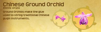 Qiao Set§Decoration