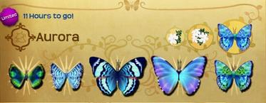 Aurora Set§Flutterpedia