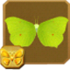 Common Brimstone§Headericon