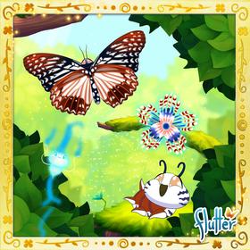 Circe Butterfly§Facebook