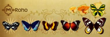 Roho Set§Flutterpedia