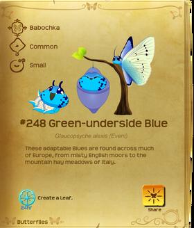 Green-underside Blue§Flutterpedia