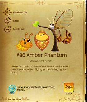Amber Phantom§Flutterpedia
