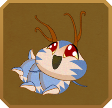 Many-banded Daggerwing§Caterpillar