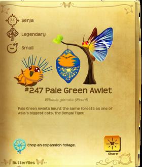 Pale Green Awlet§Flutterpedia