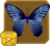 Common Batwing§Headericon