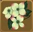 Juhua Set§DecorationSingle CommonRight