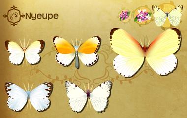 Nyeupe Set§Flutterpedia