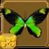 Queen Victoria's Birdwing§Headericon