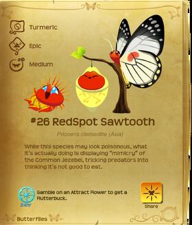 RedSpot Sawtooth§Flutterpedia