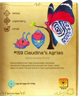 Claudina's Agrias§Flutterpedia