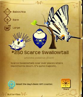 Scarce Swallowtail§Flutterpedia
