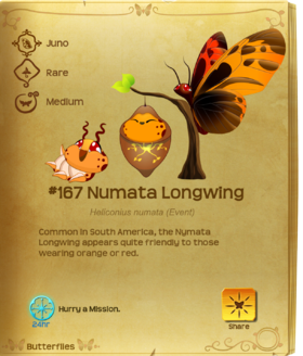 Numata Longwing§Flutterpedia