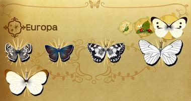Europa Set§Flutterpedia