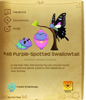 Purple-Spotted Swallowtail§Flutterpedia