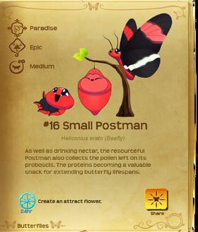 Small Postman§Flutterpedia