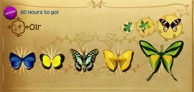 Oir Set§Flutterpedia