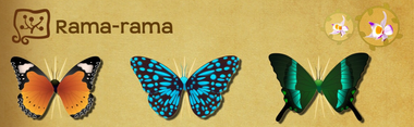 Rama-rama Set§Flutterpedia