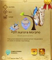 Aurora Morpho§Flutterpedia