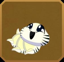 Zebra Longwing§Caterpillar