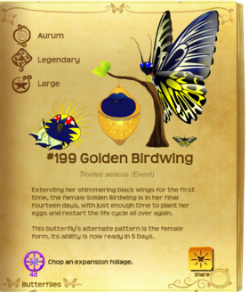 Golden Birdwing§Flutterpedia UpgradedAlt