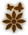 Icon§AttractionFlowers