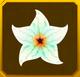 Hanwi Set§AF2 20%