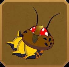 Hieroglyphic Moth§Caterpillar