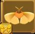 Enigmatic Rusty Goat Moth§Headericon